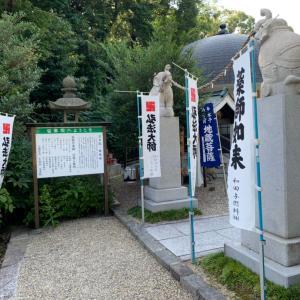 津島神社 宝寿院 かき氷