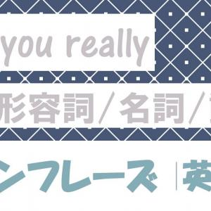 Are you really+形容詞/名詞/動詞 例文・フレーズ(53例)