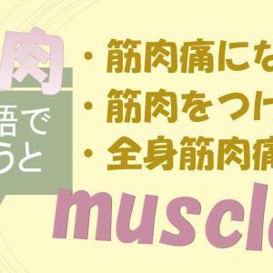「筋肉痛になる」「筋肉をつける」「全身筋肉痛だ」は英語で?