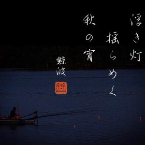 夜釣りの電気ウキ・・風情?