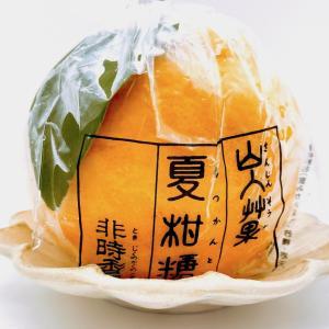 初夏の風物詩「夏柑糖」。今年も無事、この夏みかんをいただけることの幸せ(老松)