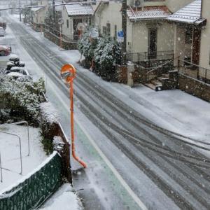 3月29日_雪