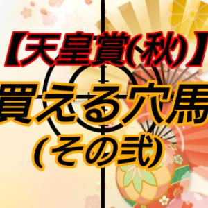 買える穴馬2【天皇賞(秋)】