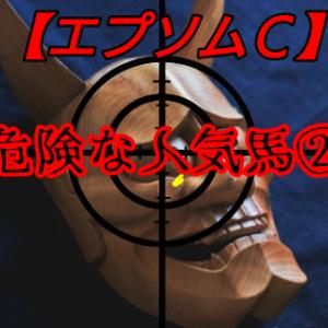 危険な人気馬2【エプソムC】