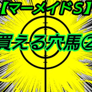 買える穴馬2【マーメイドS】