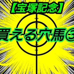 買える穴馬3【宝塚記念】