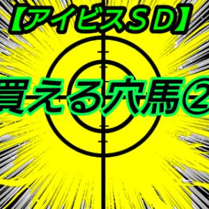 買える穴馬2【アイビスSD】