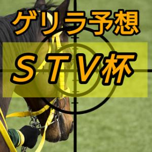 ゲリラ予想【STV杯】