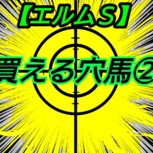 買える穴馬2【エルムS】