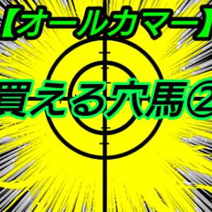 買える穴馬2【オールカマー】