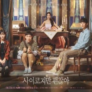 韓国ドラマ『サイコだけど大丈夫』視聴感想*グリム童話のような不気味さと強烈なキャラクターに釘付け!(感想・作品情報・評価・口コミ)