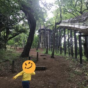 無料で遊べるあつぎこどもの森公園。神奈川県内おすすめ公園