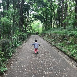 神奈川県で森林を満喫できる公園。親子で気軽に出かけて散歩しよう。神奈川県立座間谷戸山公園