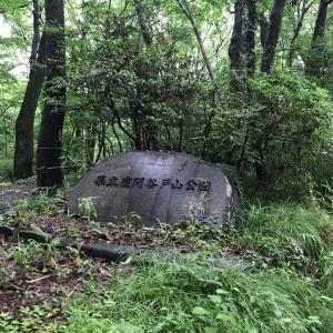 梅雨の雨間に座間市谷戸山公園。ちょっとの散歩でリフレッシュできます。