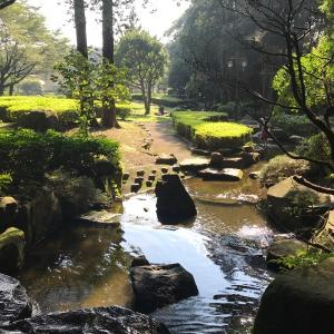 神奈川県座間市芹沢公園で水遊びはできるのか?