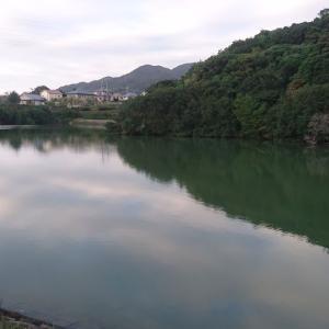 淡路島野池