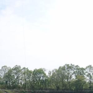 伊賀の野池で玉砕