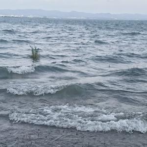 強風で撃沈