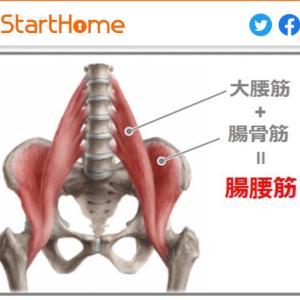 腸腰筋と腸頸靭帯
