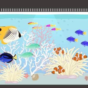 水槽蓋の隙間が魚に飛び出しを誘導している原因!