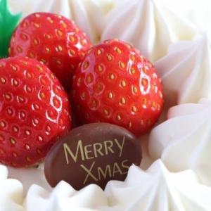 クリスマスには一年間頑張った家族や自分への特別なご褒美を!