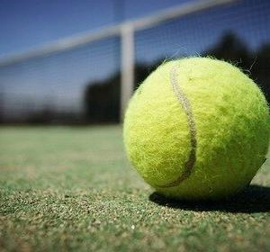 【悲報】ジョコビッチのせいでテニスツアー再開中止の可能性wwxwwxww
