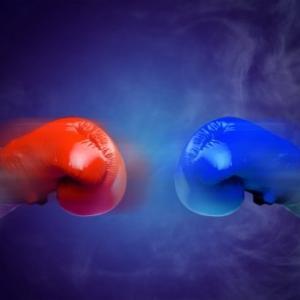 【動画】体重240kgの素人男と63kgの女性プロ格闘家が対戦した結果wwww