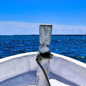 【訃報】サンマ、水揚げゼロで漁終了 打ち切りに・・・