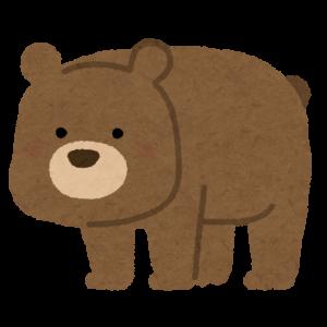「お前、なんなんだ!」暗闇でクマと気付かず格闘wwwwwwwwwww
