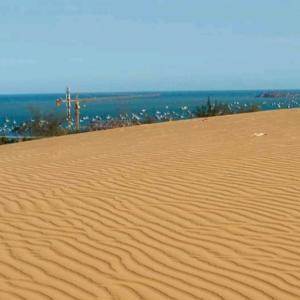 ベトナムの砂丘をゆく in ファンティエット