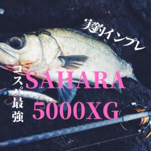【ヒラスズキタックル実釣レビュー】シマノ サハラ5000XG コスパ最強のおすすめリールはコレだ!!