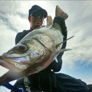 【釣旅】ヒラスズキを求めて。五島列島 福江島2日目。