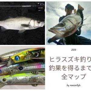 【まとめ】ヒラスズキ釣りで釣果を得るまでの全マップ。釣り方・釣り場・魚の生態