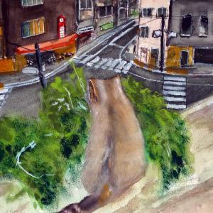 猫の見つめる街角