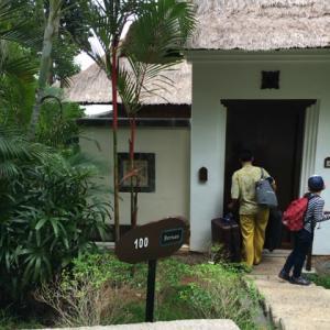 バンヤン ツリー ビンタン(Banyan Tree Bintan) ホテルに泊まる1 部屋