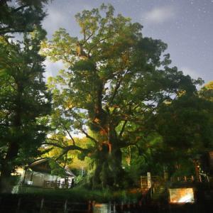 真夜中の蒲生大楠神社です・・