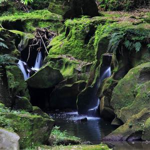 世界文化遺産 鹿児島市 関吉の疎水溝を散歩