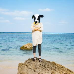 タイへ1カ月旅行。宿泊先どうする問題~Airbnbかホテルか~