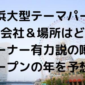 横浜テーマパーク映画会社&場所どこ?ワーナー有力説の噂やオープン年を予想!
