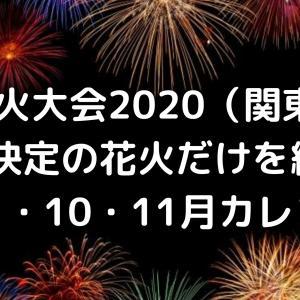 花火大会2020開催決定の花火だけを紹介!関東【8月9月10月11月カレンダー】