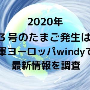 台風13号2020たまご発生はいつ?米軍ヨーロッパwindyでの最新情報を調査