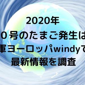 台風20号2020たまご発生はいつ?米軍ヨーロッパwindyでの最新情報を調査