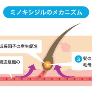 ミノキシジルタブレットの効果と副作用の最新情報