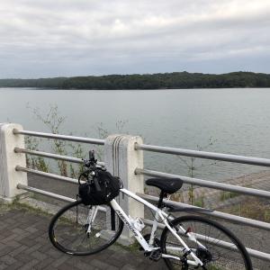 わたあめのゆるポタ日和 サイクリング初心者が多摩湖、狭山湖をなんとか一周してきた