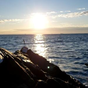 石鯛釣りと海に浮かぶ黒い影~とまたまた鈴音さん