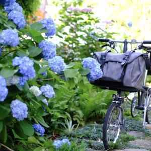 6/3は「WORLD BICYCLE DAY(世界自転車の日)」