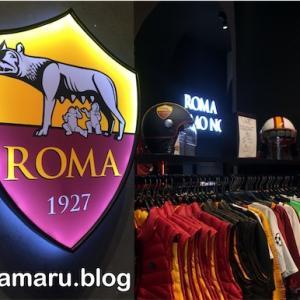 【Re:旅31日目】雨のローマを歩くのは一苦労。ブログ閲覧数爆上がりの要因は・・・