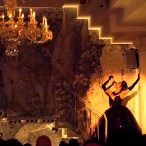 ニューヨークで魅了されたバーレスクと日本のストリップ劇場小史(大衆芸能の魅力 3) /  伝説の女傑 浅草ロック座の母 齋藤 智恵子著 を読む
