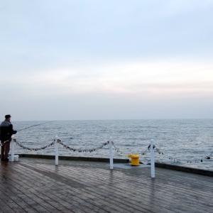 グダニスク近郊 ガイド 1 グディニャ / バルト海の三連都市 グディニャ、ソポトとギュンター・グラスの小説『蟹の横歩き ヴィルヘルム・グストロフ号事件』 を読む