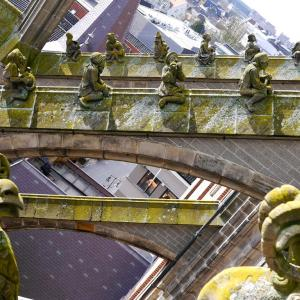驚愕の聖ヤン大聖堂の怪物たち / オランダ デンボス訪問記-聖ヤン大聖堂